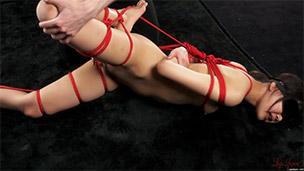 Leg Bondage